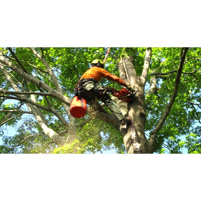 Larry's Tree Service LLC